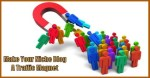 niche blog traffic magnet