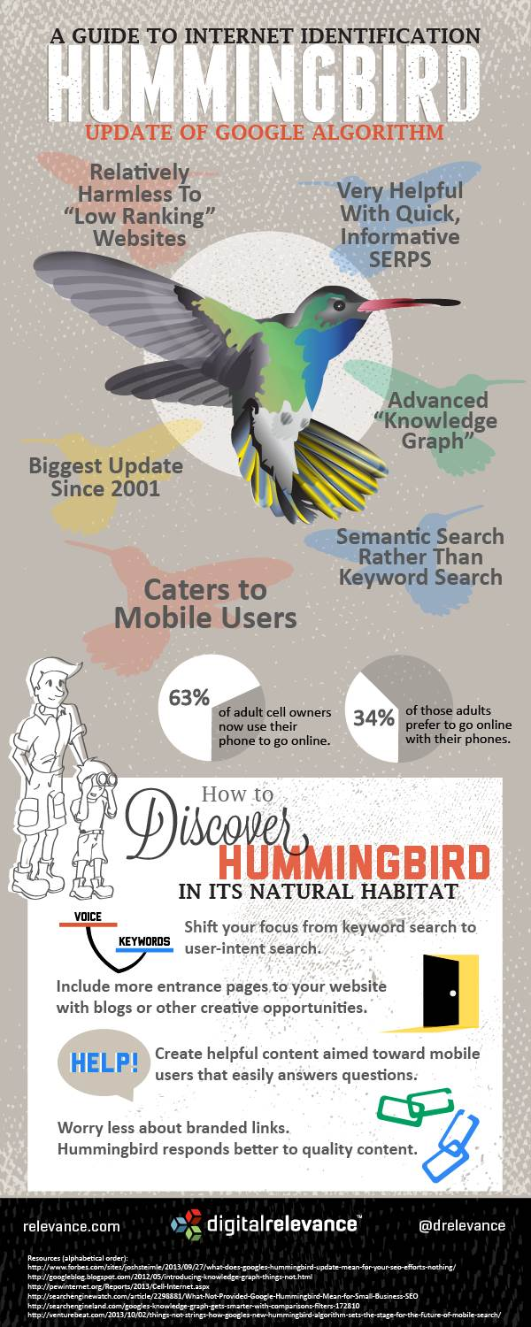 Google Hummingbird Visual Guide