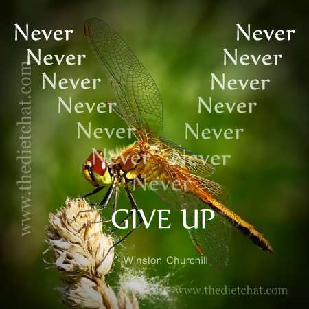 Never Give Up Image For Blog Post