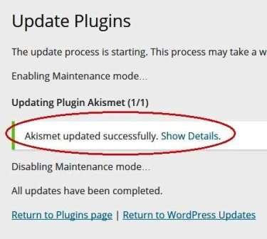 successful plugin update method 2