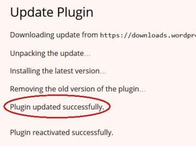 successful plugin update