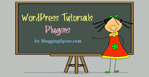 what is a plugin